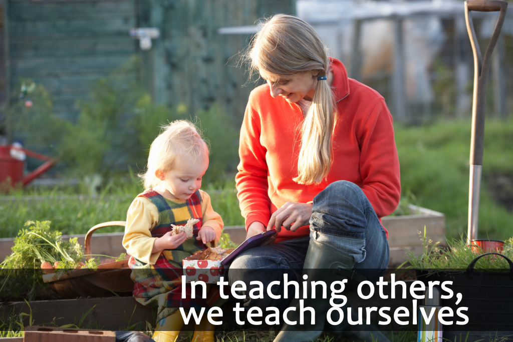 random quote that in teaching others we teach ourselves
