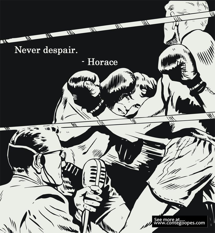 quote never despair