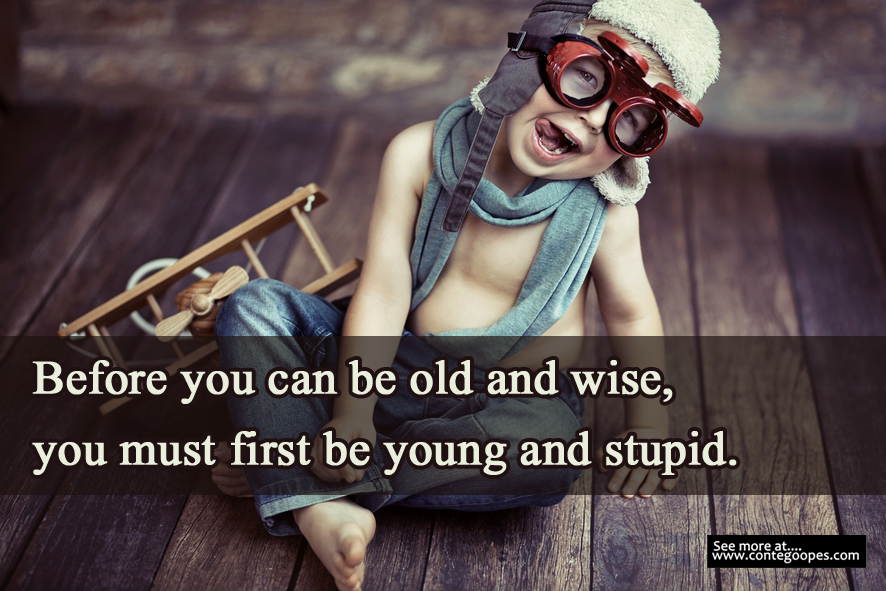 young and stupid then old and wise